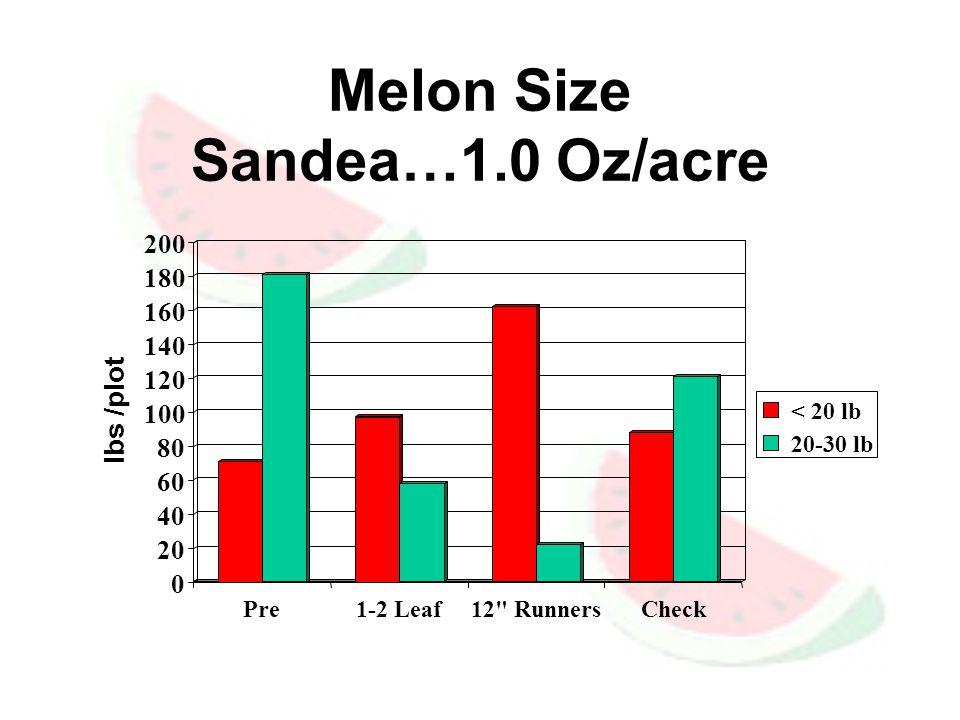 Melon Size Sandea…1.0 Oz/acre 0 20 40 60 80 100 120 140 160 180 200 lbs /plot Pre1-2 Leaf12 RunnersCheck < 20 lb 20-30 lb