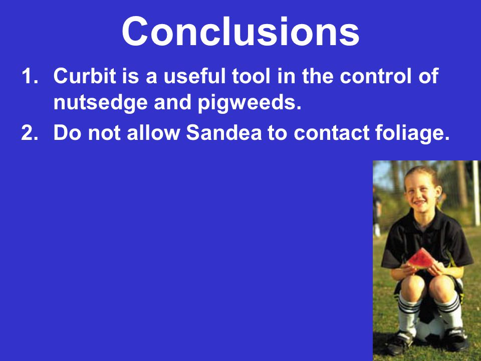 Conclusions 1.Curbit is a useful tool in the control of nutsedge and pigweeds. 2.Do not allow Sandea to contact foliage.