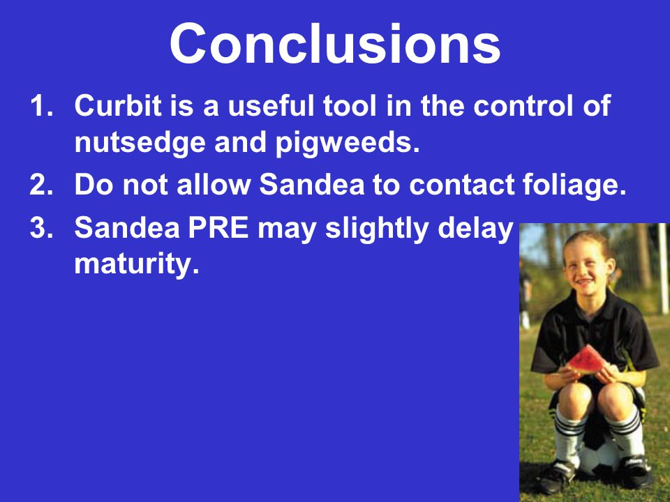 Conclusions 1.Curbit is a useful tool in the control of nutsedge and pigweeds. 2.Do not allow Sandea to contact foliage. 3.Sandea PRE may slightly del