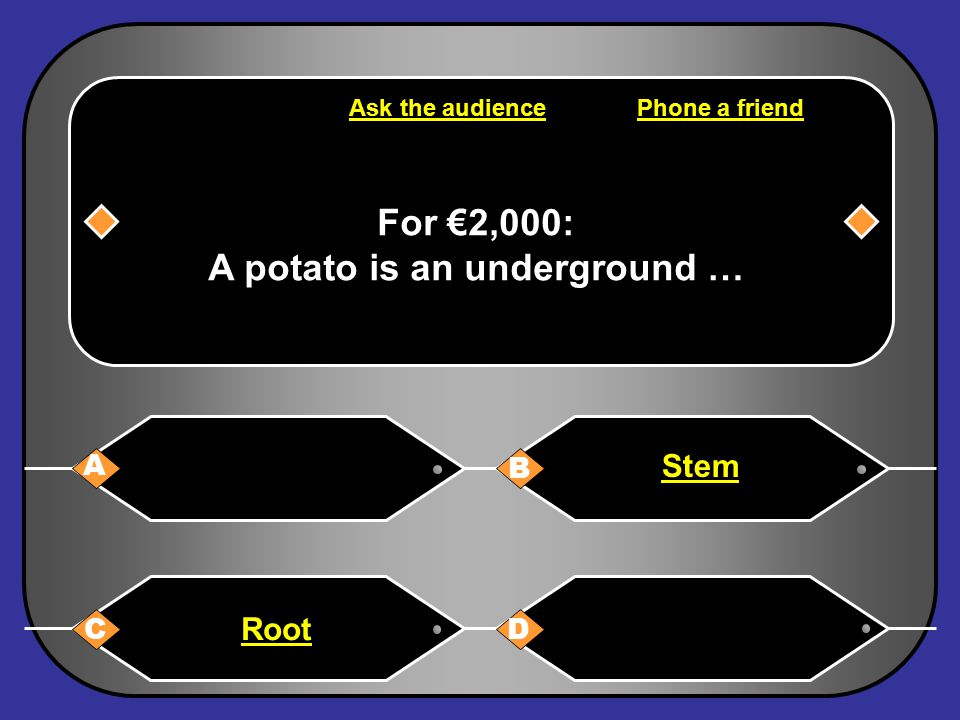 B: Stem You have won €2,000 Next Question