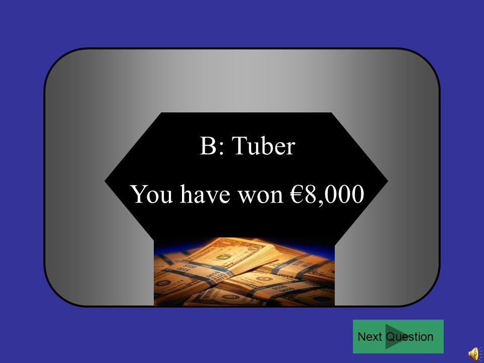 For €8,000: A swollen fibrous root is called a … A B C D Clone Tuber BulbSeed 50:50Ask the audiencePhone a friend