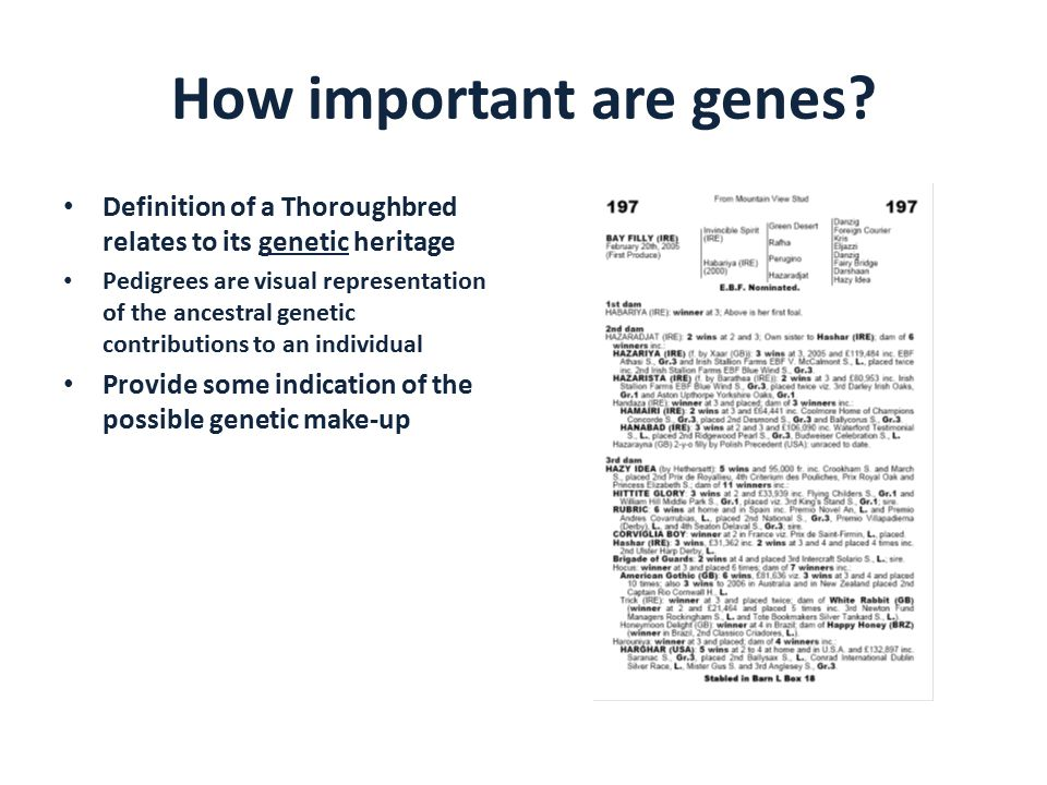How important are genes.