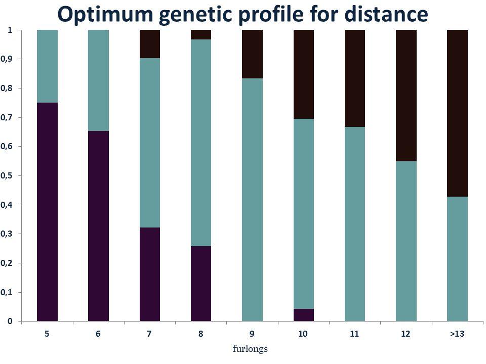 Optimum genetic profile for distance furlongs