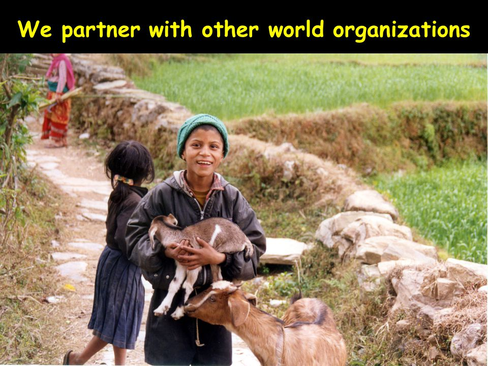 We partner with other world organizations