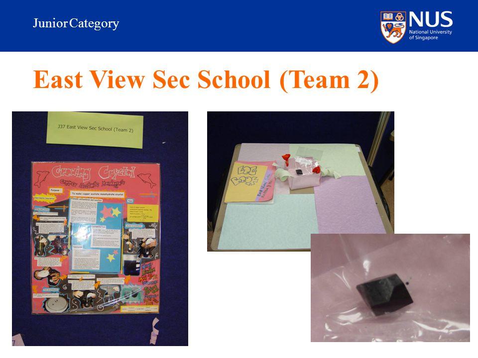 Junior Category East View Sec School (Team 2)