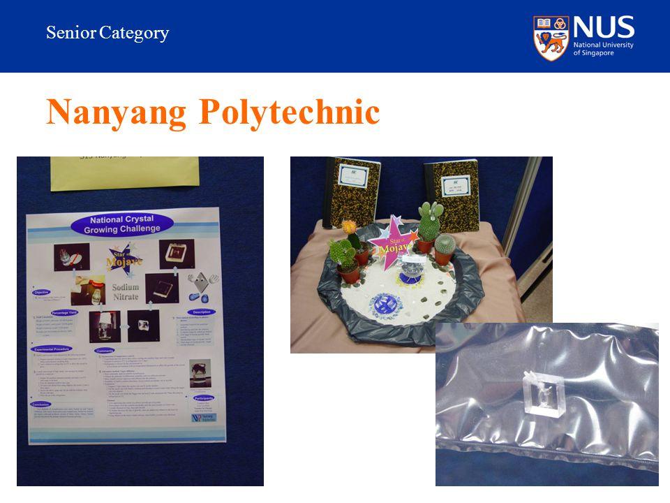 Senior Category Nanyang Polytechnic