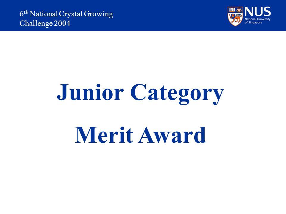 Junior Category Merit Award