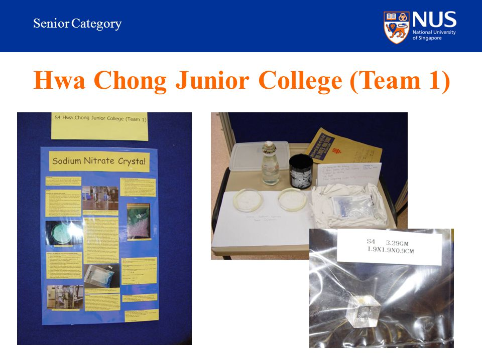 Senior Category Hwa Chong Junior College (Team 1)