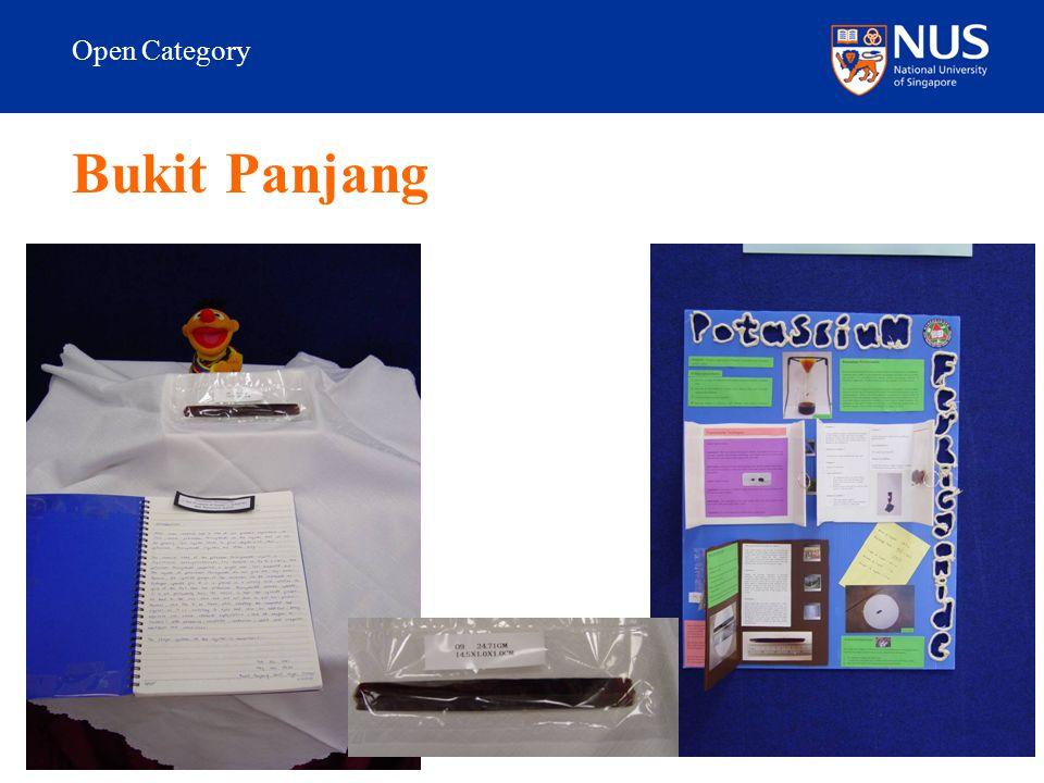 Open Category Bukit Panjang