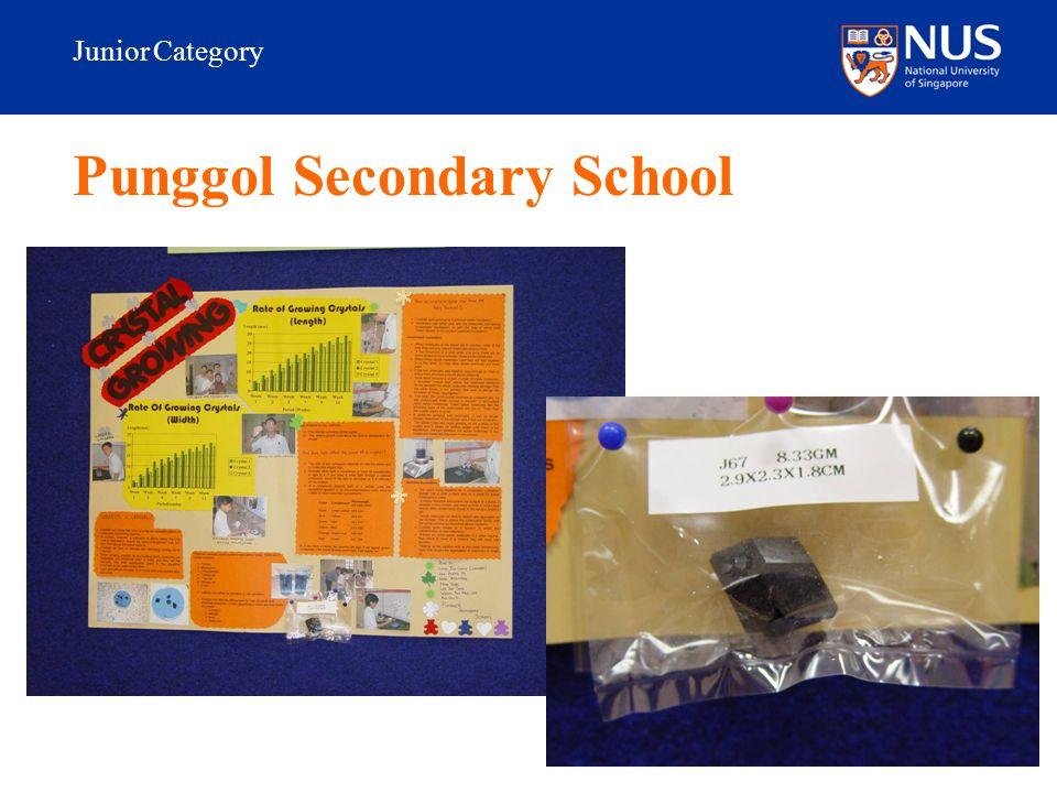 Junior Category Punggol Secondary School