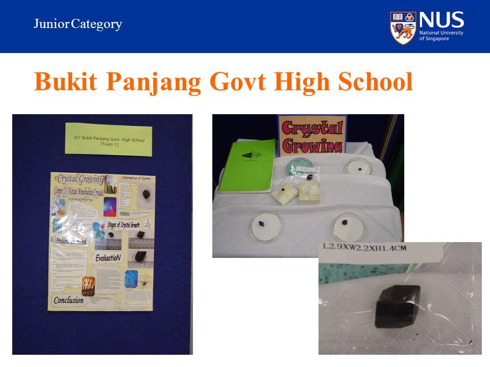 Junior Category Bukit Panjang Govt High School