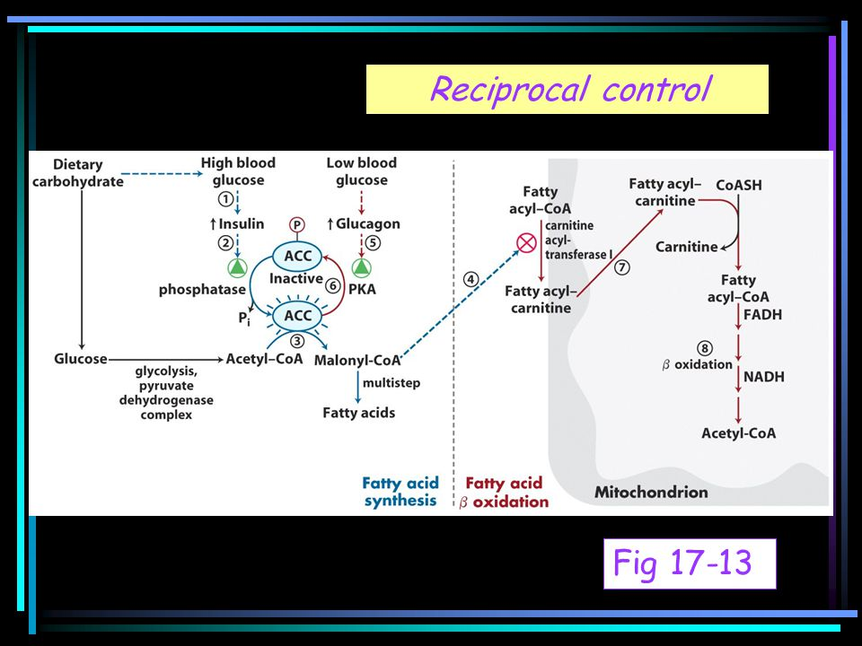 Reciprocal control Fig 17-13