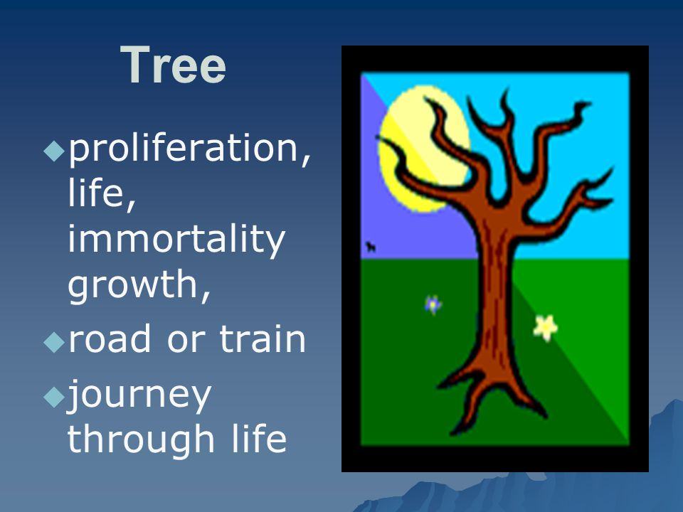 Tree   proliferation, life, immortality growth,   road or train   journey through life