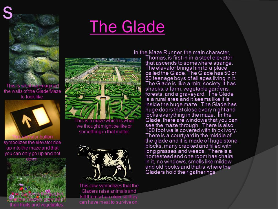 The Glade In the Maze Runner, the main character, Thomas, is first in in a steel elevator that ascends to somewhere strange. The elevator brings him t