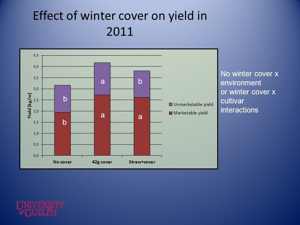 Effect of winter cover on yield in 2011 No winter cover x environment or winter cover x cultivar interactions b a a b ab