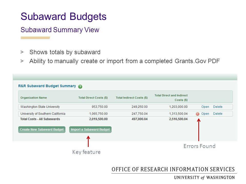 Subaward Budgets Subaward Summary View  Shows totals by subaward  Ability to manually create or import from a completed Grants.Gov PDF Key feature Errors Found