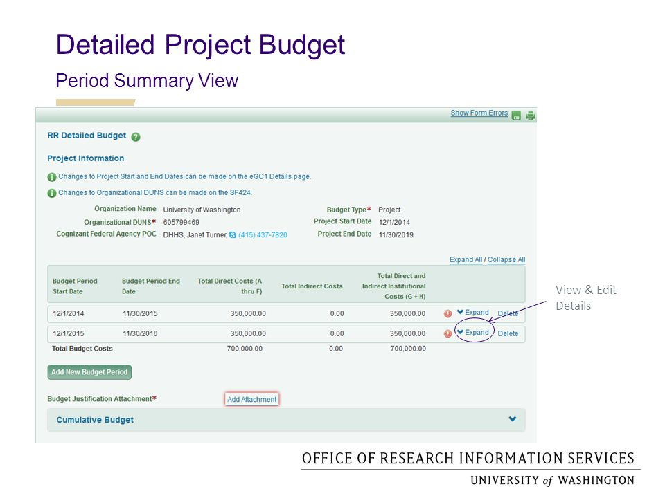 Detailed Project Budget Period Detail View Expanded Detail