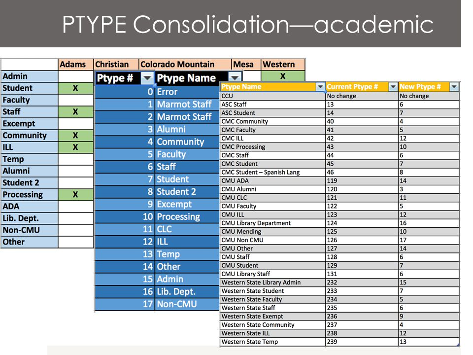 PTYPE Consolidation—academic