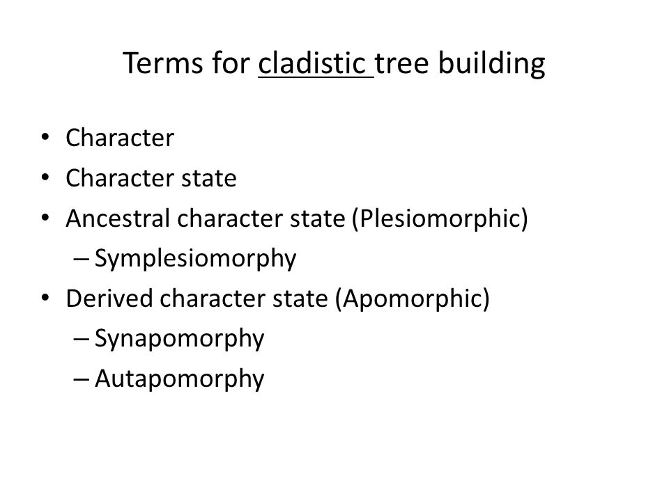 Terms for cladistic tree building Character Character state Ancestral character state (Plesiomorphic) – Symplesiomorphy Derived character state (Apomorphic) – Synapomorphy – Autapomorphy