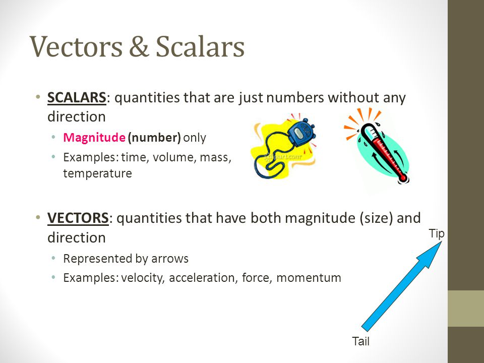 Vectors & Scalars SCALARS: quantities that are just numbers without any direction Magnitude (number) only Examples: time, volume, mass, temperature VECTORS: quantities that have both magnitude (size) and direction Represented by arrows Examples: velocity, acceleration, force, momentum Tail Tip