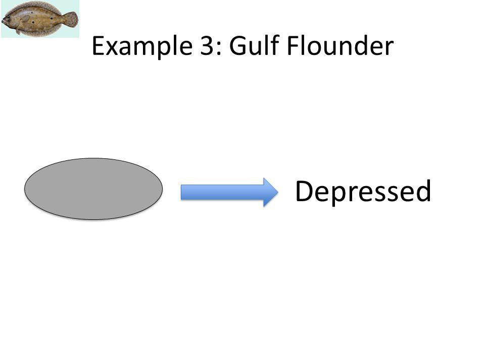 Depressed Example 3: Gulf Flounder