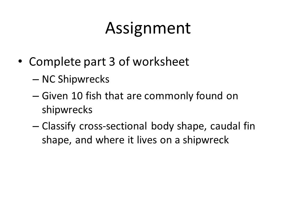 Assignment Complete part 3 of worksheet – NC Shipwrecks – Given 10 fish that are commonly found on shipwrecks – Classify cross-sectional body shape, caudal fin shape, and where it lives on a shipwreck