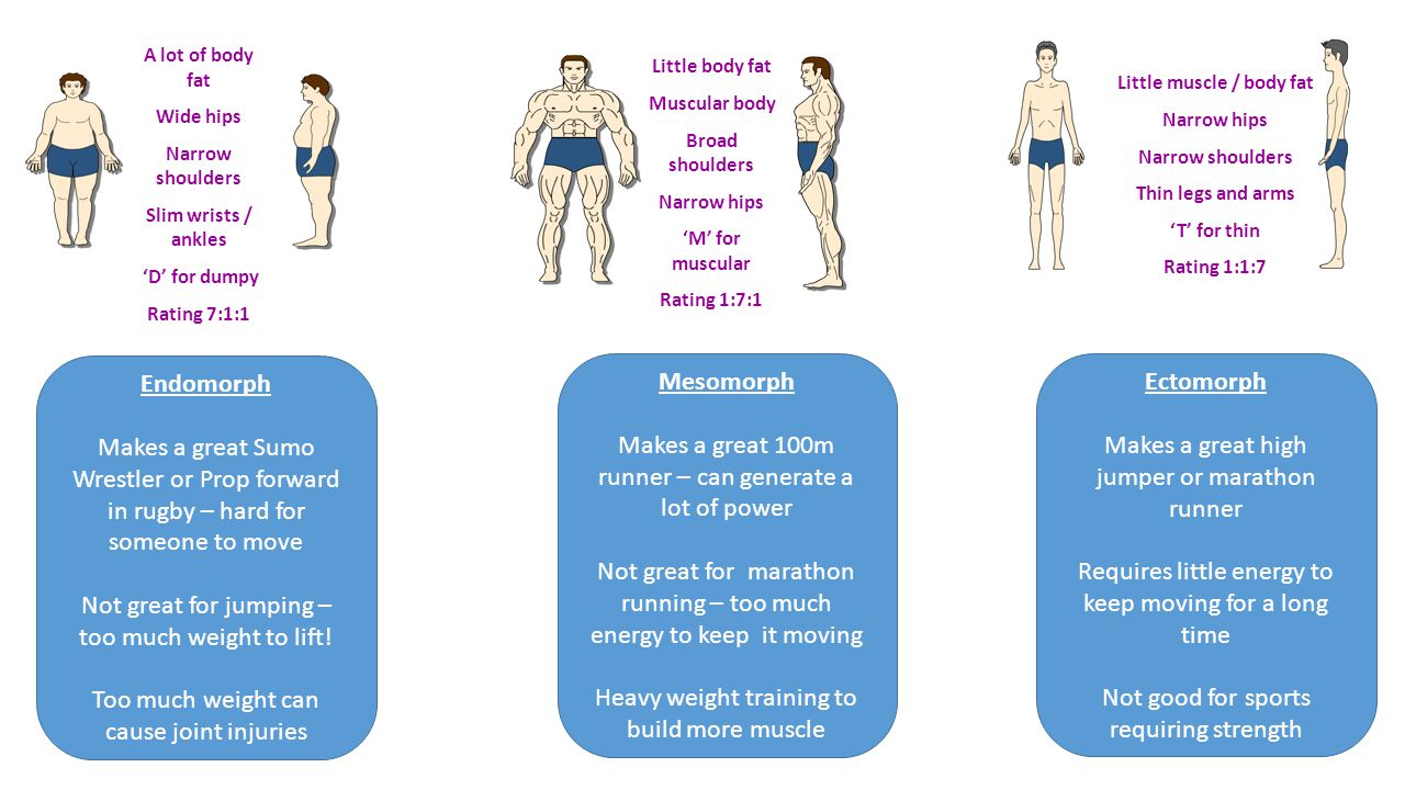 A lot of body fat Wide hips Narrow shoulders Slim wrists / ankles 'D' for dumpy Rating 7:1:1 Little body fat Muscular body Broad shoulders Narrow hips