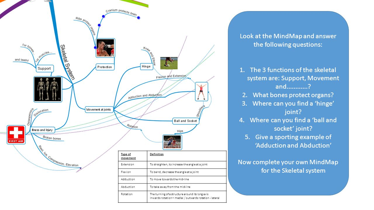 Look at the MindMap and answer the following questions: 1.The 3 functions of the skeletal system are: Support, Movement and............? 2.What bones