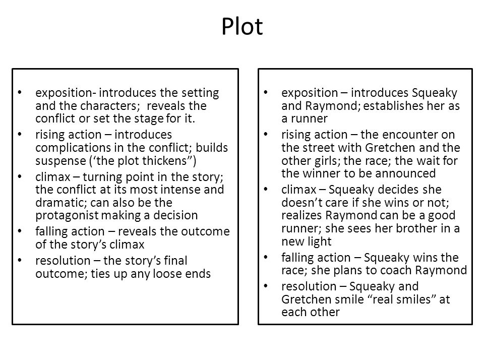 Plot exposition- introduces the setting and the characters; reveals the conflict or set the stage for it.