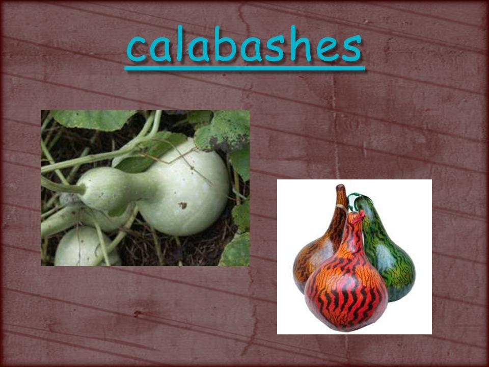 calabashes