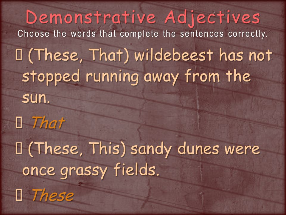 Demonstrative Adjectives Choose the words that complete the sentences correctly.