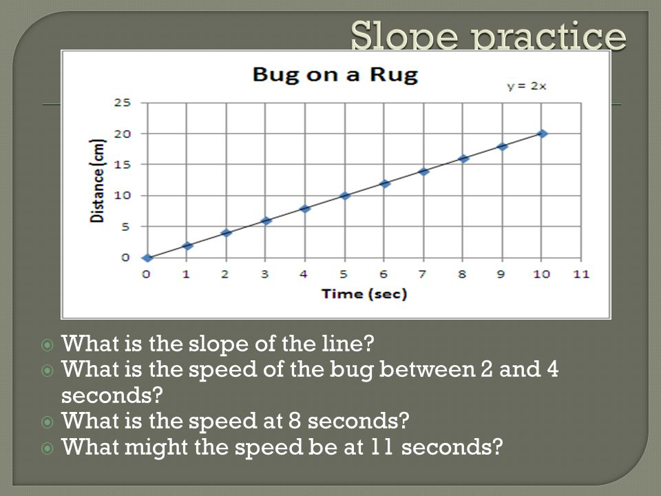  What is the slope of the line?  What is the speed of the bug between 2 and 4 seconds?  What is the speed at 8 seconds?  What might the speed be a