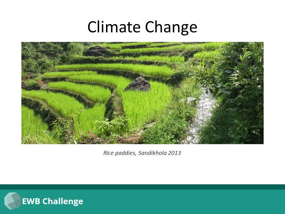 Climate Change Rice paddies, Sandikhola 2013