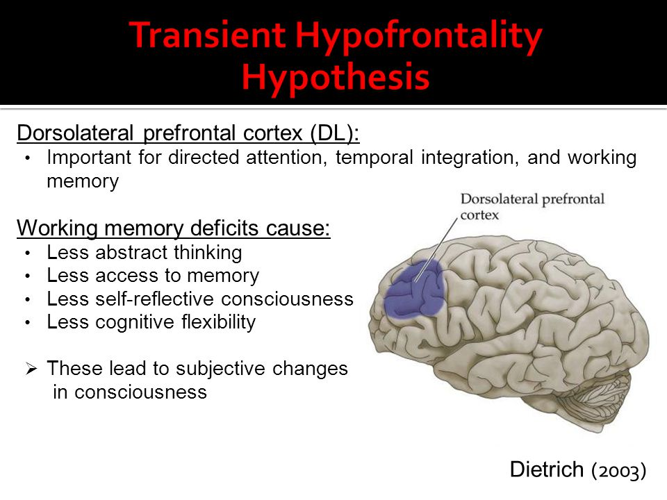Dorsolateral prefrontal cortex (DL): Important for directed attention, temporal integration, and working memory Working memory deficits cause: Less ab
