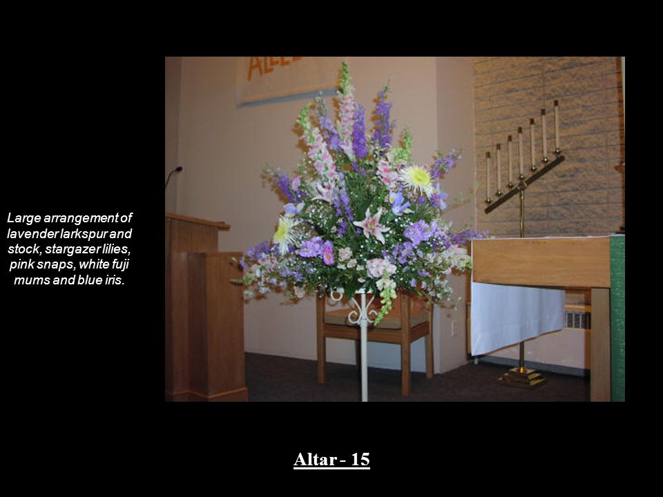 Large arrangement of lavender larkspur and stock, stargazer lilies, pink snaps, white fuji mums and blue iris.