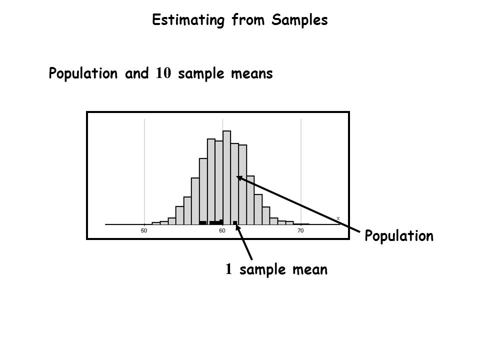 Estimating from Samples Population and 10 sample means 1 sample mean Population