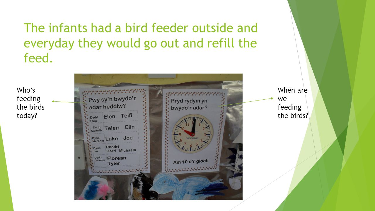 The infants had a bird feeder outside and everyday they would go out and refill the feed.