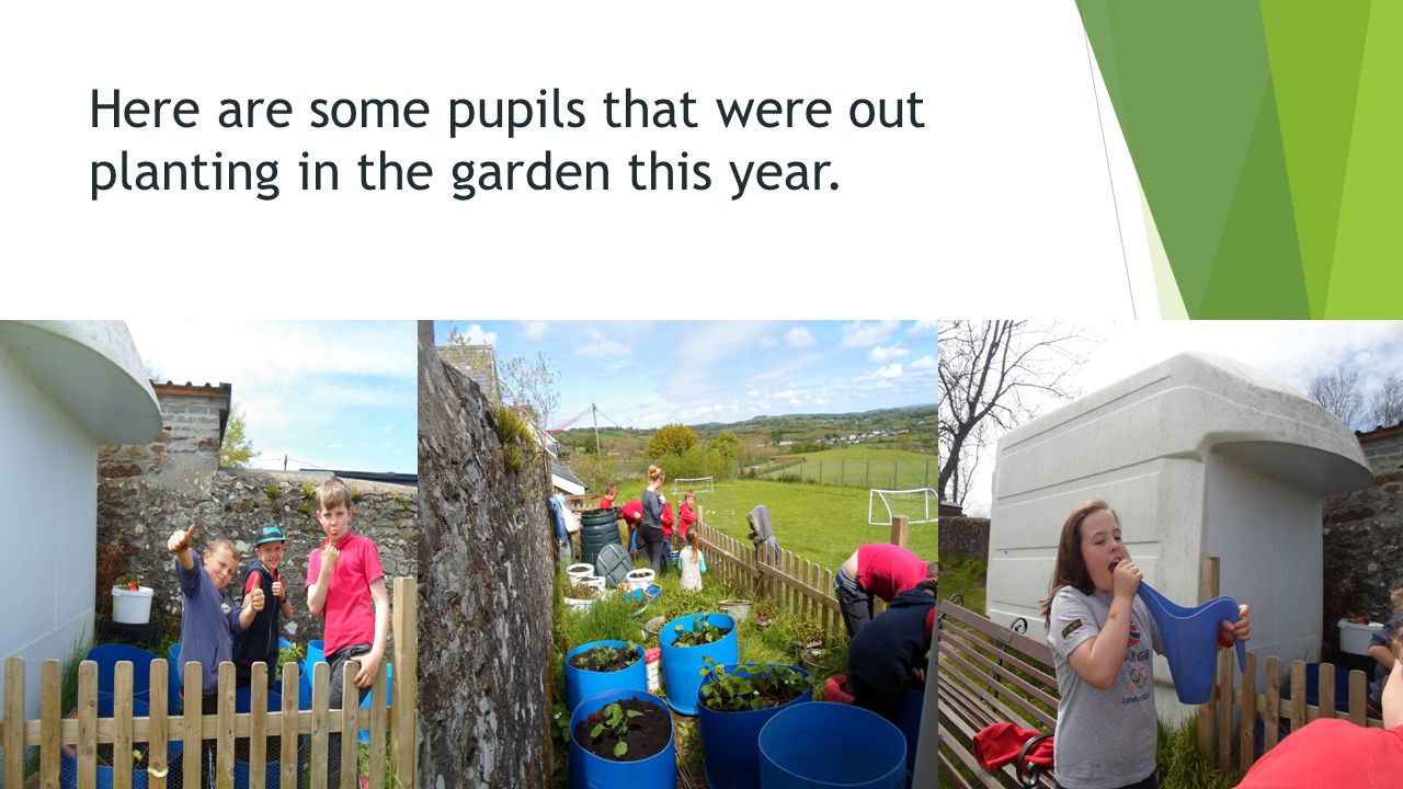 Here are some pupils that were out planting in the garden this year.