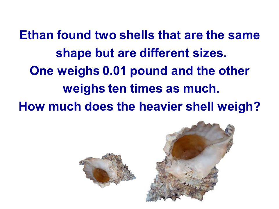 Ethan found two shells that are the same shape but are different sizes.