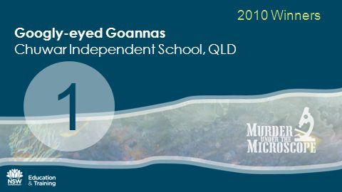 2010 Winners Googly-eyed Goannas Chuwar Independent School, QLD 1