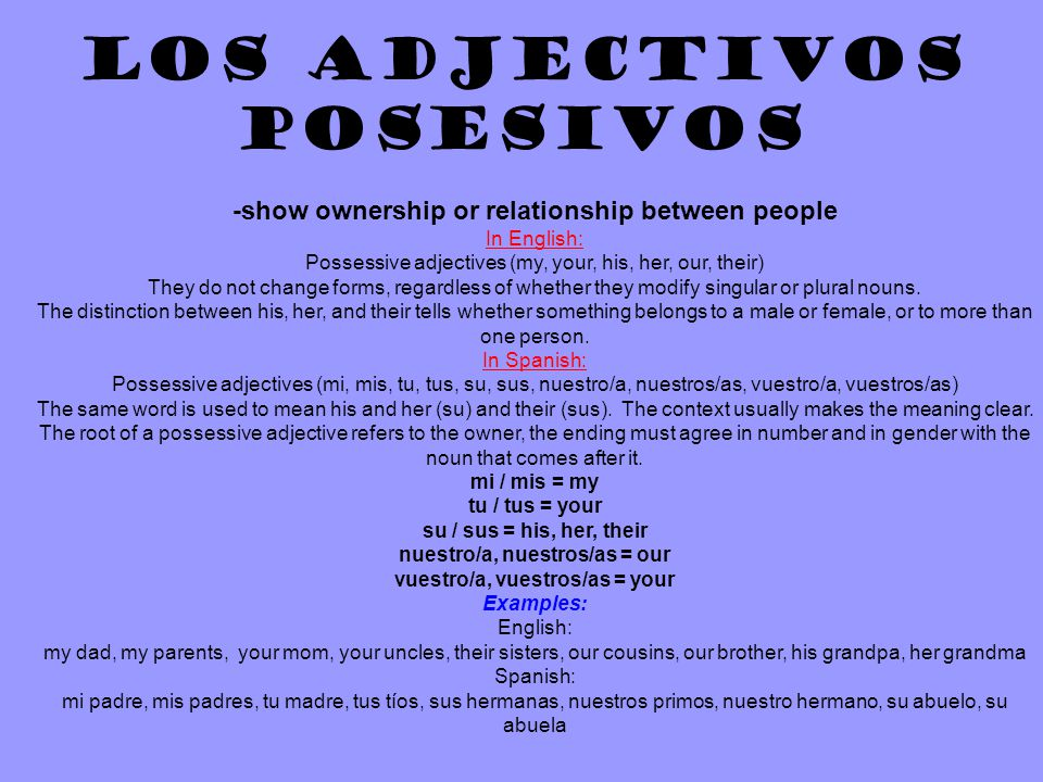 Los Adjectivos Posesivos -show ownership or relationship between people In English: Possessive adjectives (my, your, his, her, our, their) They do not