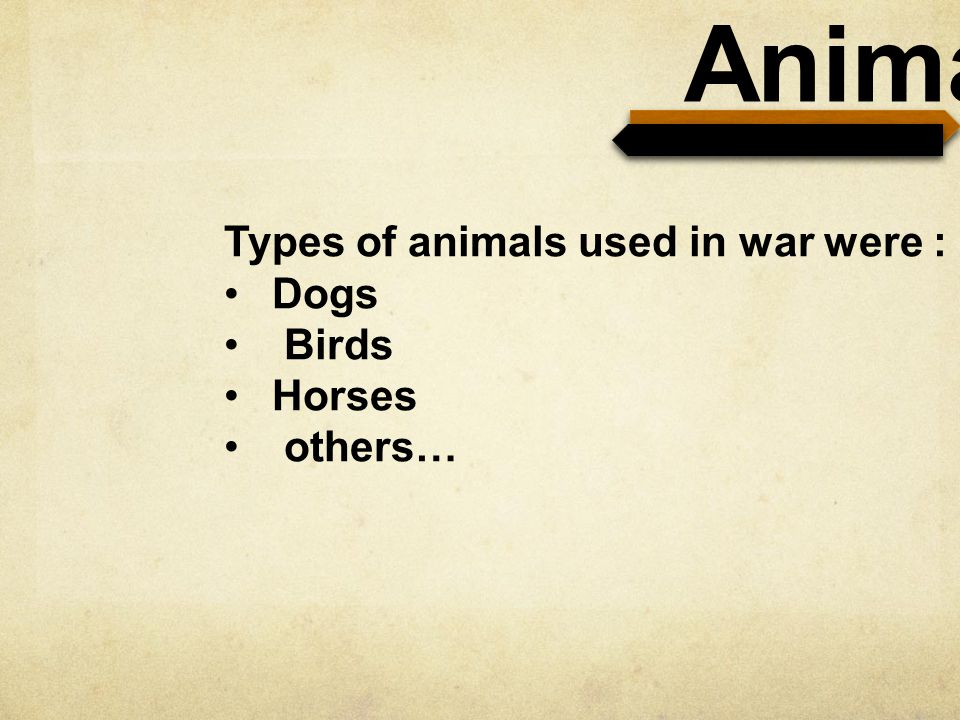 Animals Types of animals used in war were : Dogs Birds Horses others…