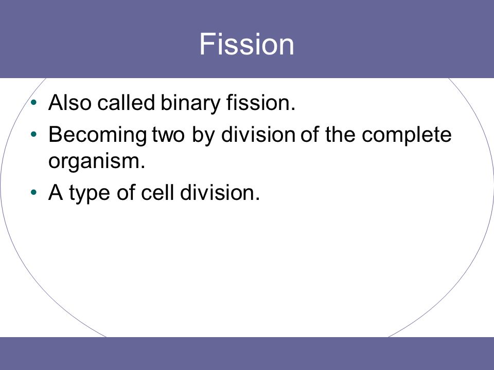 Fission Also called binary fission. Becoming two by division of the complete organism. A type of cell division.