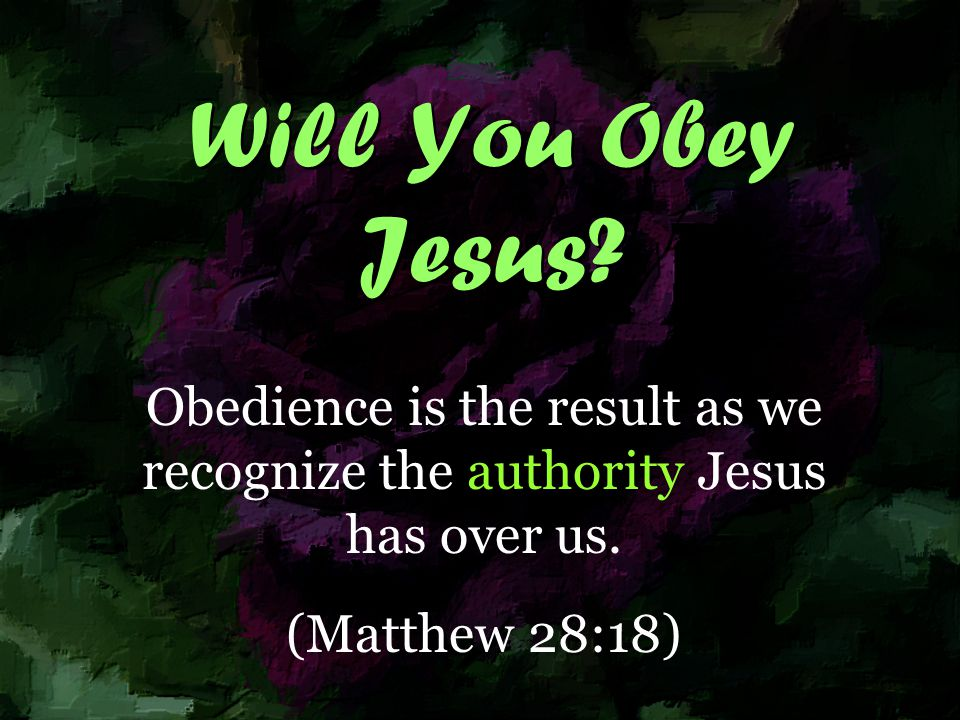 Will You Obey Jesus. Obedience is the result as we recognize the authority Jesus has over us.