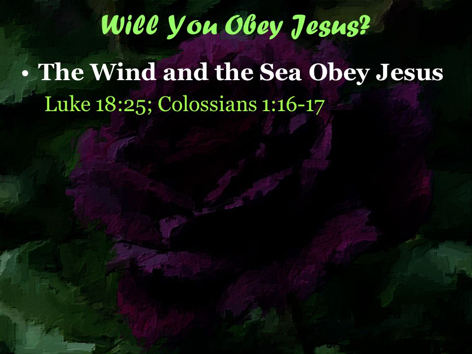 Winds and Waves Should we not learn from the wind and the waves to instantly obey when the Lord commands us?