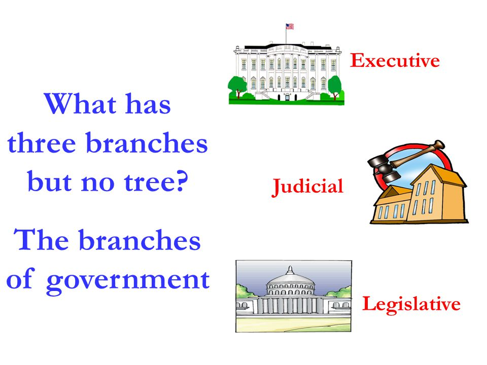 What has three branches but no tree? The branches of government Executive Legislative Judicial