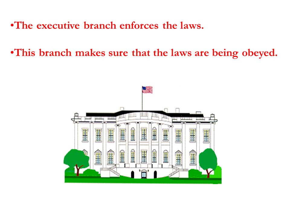 The executive branch enforces the laws. This branch makes sure that the laws are being obeyed.