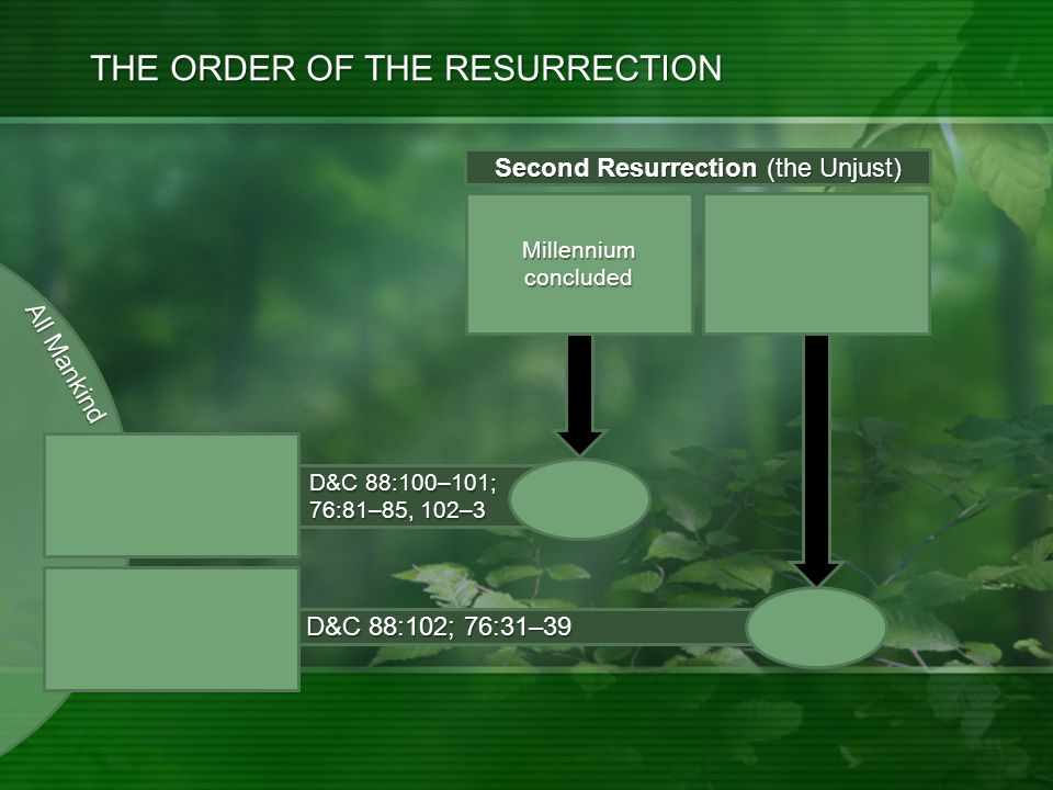 All Mankind D&C 88:102; 76:31–39 D&C 88:100–101; 76:81–85, 102–3 THE ORDER OF THE RESURRECTION Millennium concluded Resurrections Concluded Evil Spirits.