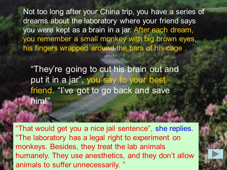 Not too long after your China trip, you have a series of dreams about the laboratory where your friend says you were kept as a brain in a jar.
