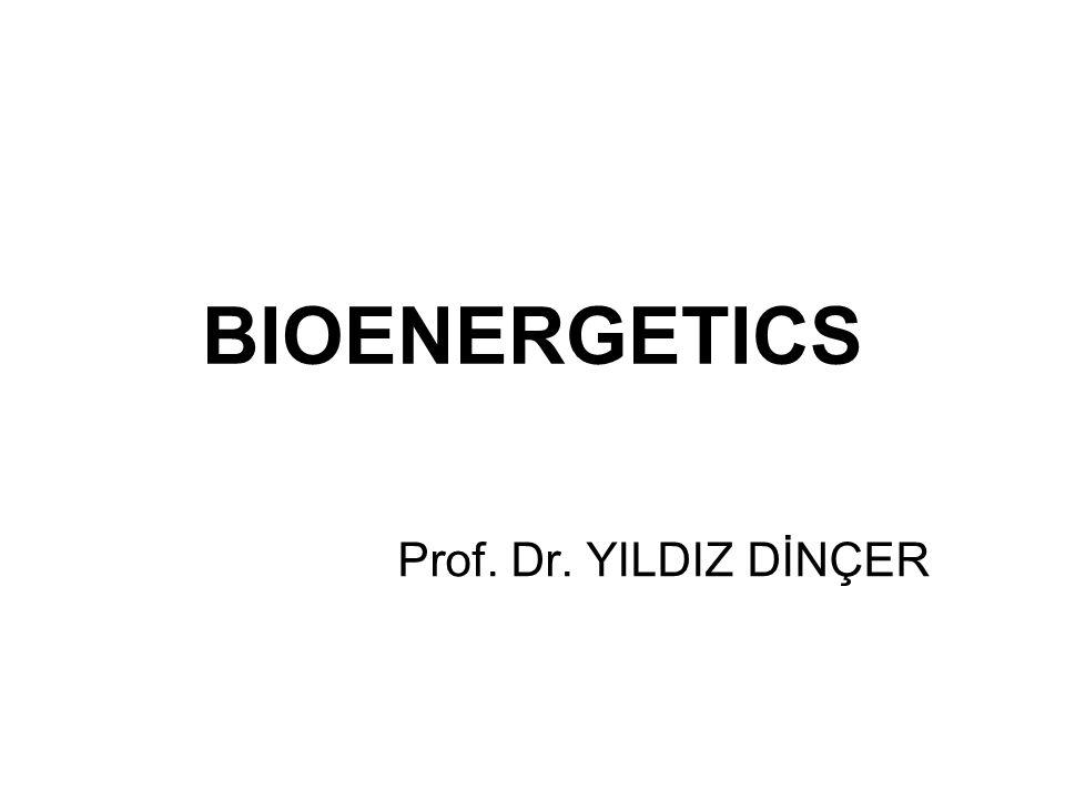 BIOENERGETICS Prof. Dr. YILDIZ DİNÇER